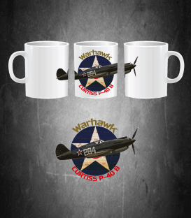 Curtiss P-40B USAF Mug
